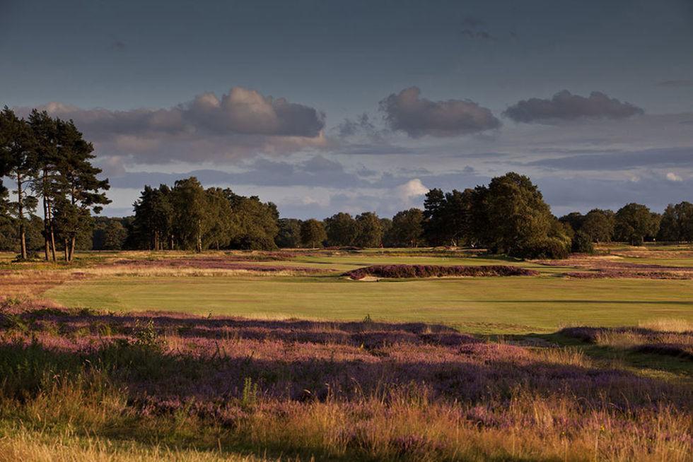 AOGS v RAFGS at Walton Heath Golf Club