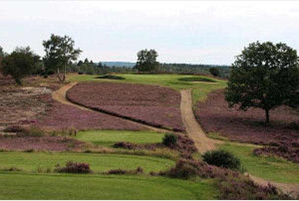 AOGS v Hankley Common GC